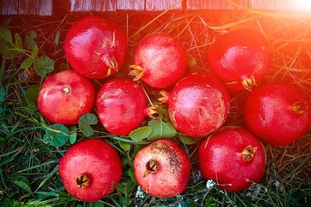 a pomegranate: ripe cracked raw pomegranates on a green grass background