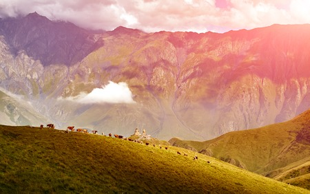caucas: Caucasus green hills and mountains, on the sunset. Georgia Stock Photo