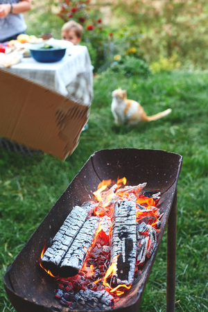 flame grilled and wood burning in fire. family BBQ party in outdoor or home garden. fireplace on the grass. cat near table with food on the background.