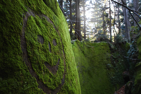 painted smile on the green mossy stone in the dramatic magic woods Stock fotó