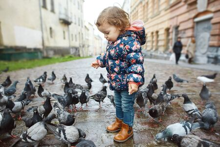 Funny baby girl standing among pigeons on the street at autumn day. Happy kid playing and feeds a pigeons. happy childhood.