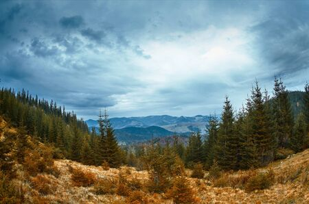 beautiful view of an autumn mountain landscape with a cloudy sky and pine woods. Imagens