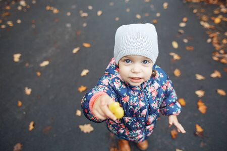 Close up portrait of cute little girl in the autumn park with leafs on background, holding cookies. Baby in warm autumn clothes, having fun outdoors. Carefree childhood. Imagens