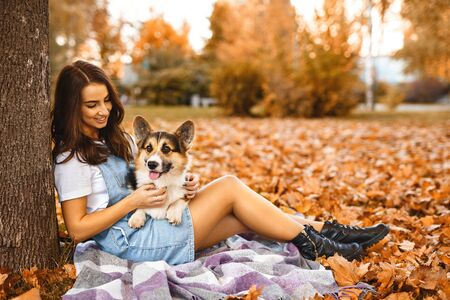 young woman together with cute Welsh Corgi Pembroke dog in a fall park outdoors. Young female owner huging pet on the orange foliage background. Concept friendship with dog and human