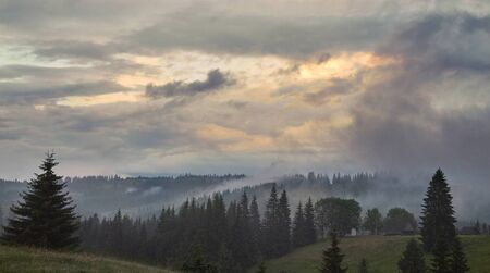 mystical dark foggy forest and and mountain landscape with gloomy sky and dramatic clouds. Ukrainian mountains, Carpathian, scenery of nature Imagens