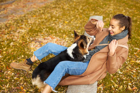 Young woman playing with her adorable Welsh Corgi dog on grass with foliage in autumn park, having fun and spending time together outdoors.