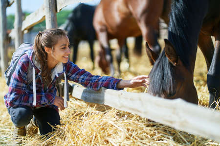 woman on countryside farm or ranch petting horse. Animals, friendship and hobby concept.