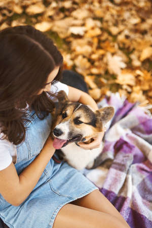 Funny Welsh Corgi dog with female owner at autumn park with colorful fallen leaves around. Concept friendship with dog and human
