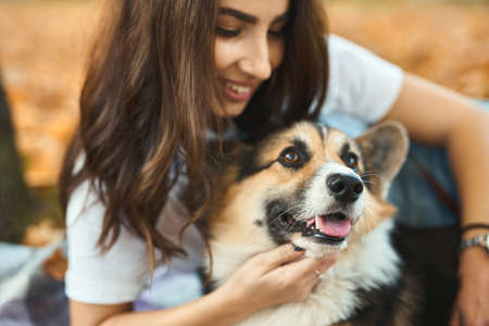 close-up portrait woman with her pet Welsh Corgi dog outdoors. fallen orange foliage on background. Cute moments pets and human. Focus on dog nose