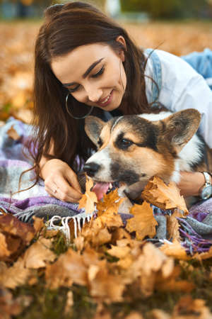 autumn portrait woman with her pet Welsh Corgi dog at park outdoors. fallen orange foliage on background. Cute moments pets and human. Imagens