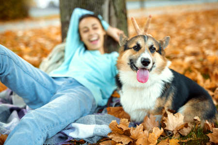 Funny Welsh Corgi dog with woman owner at autumn park having fun, spending time together, colorful fallen leaves on background