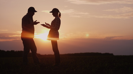 Two farmers work in the field in the evening at sunset. A man and a woman discuss something, use a tablet Archivio Fotografico - 121257112