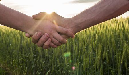 Apretón de manos de dos agricultores en el fondo de un campo de trigo con el resplandor del sol