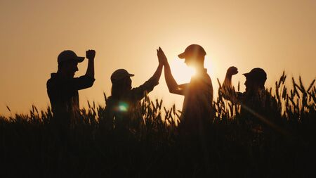 A group of young farmers makes the mark high five in a field of wheat. Success in agribusiness