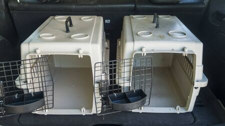 Two empty cages with open doors ready for transporting animals in the trunk of a car
