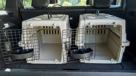 Two empty cages for the transport of animals in the trunk of a car