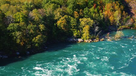 The riverbed of Niagara and the forest. Beautiful summer landscape, nature of the USA and Canada. 4K 10 bit video