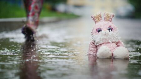 A damp, plush bunny is sitting in a puddle in the rain. Passer passes by. Indifference and coldness concept