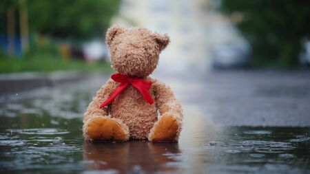 Lonely teddy bear sits in a puddle in the rain Imagens