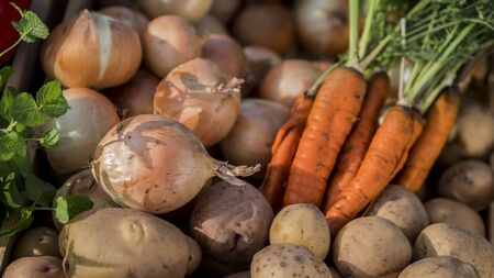 Carrots, potatoes and onions - a set of vegetables from the autumn harvest Imagens