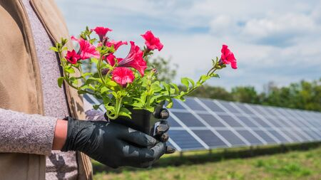 Woman holds pot with flower in front of home solar power plant 版權商用圖片