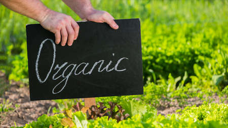 Farmer sets up Organic plaque on his field