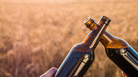 Two men clink bottles of beer on a background of a wheat. Side view 写真素材