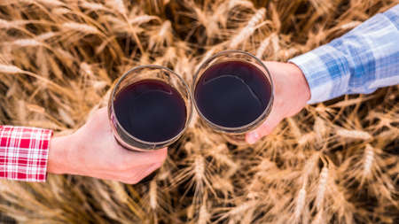 Hands with glasses of beer clink glasses on the background of a field of wheat. Top view