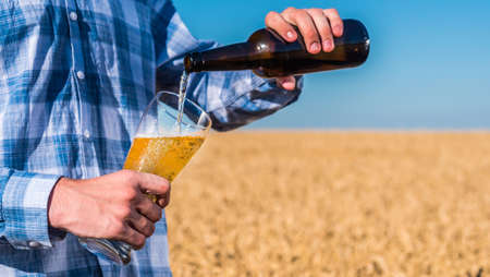 A man pours beer from a bottle into a glass. Against the background of wheat ears on the field