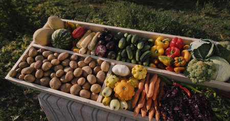 Top view: Vegetable counter at farmers market.