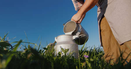 The milkman pours milk into the can against the background of a green meadow Фото со стока