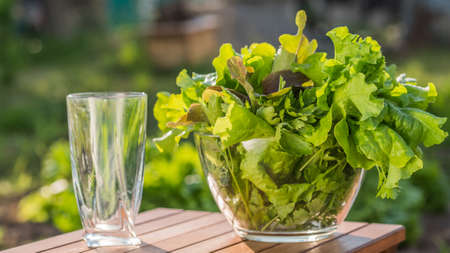 A plate with lettuce leaves and an empty glass nearby. Ingredients for vitamin drink