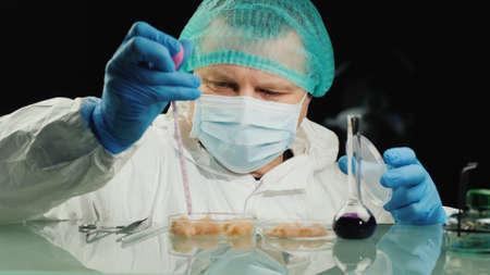 Laboratory worker tests chicken meat samples, checks for chicken flu virus