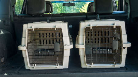 Two cages for the transport of pets in the trunk of a car
