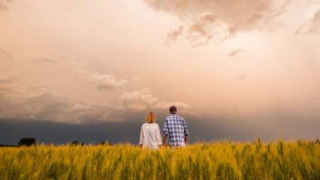 A pair of farmers stand in a field of wheat amid a dramatic stormy sky 免版税图像
