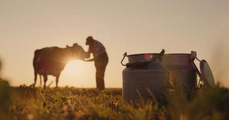 The silhouette of a farmer, stands near a cow. Milk cans in the foreground 免版税图像