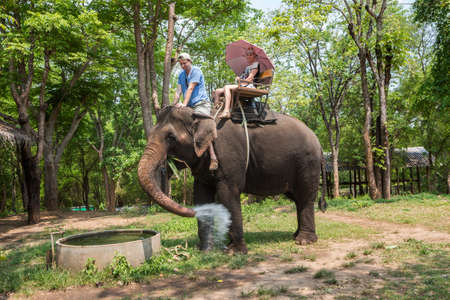 A couple of tourists ride an elephant against the backdrop of the jungle. The elephant washes its feet, pours water on itself