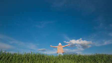 A free woman stands in the green grass against a blue sky, raised up her hands Imagens