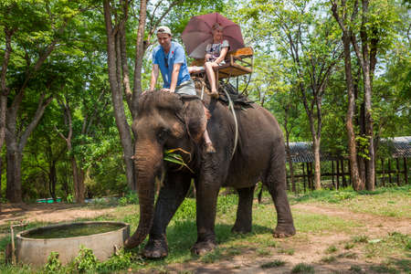 A couple of tourists ride an elephant against the backdrop of the jungle.