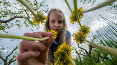 Girl picks flowers in the meadow. Bottom view