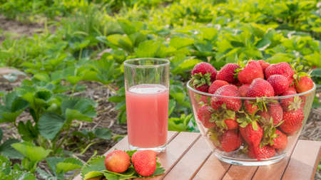 A bowl of ripe strawberries and a glass of juice nearby. Useful and natural drinks Imagens