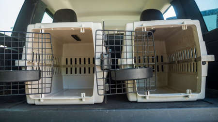 Cages for transportation of pets with open doors are in the trunk of a car