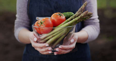 A woman holds a bowl with fresh vegetables - tomatoes, asparagus, cucumbers - ingredients for healthy food 写真素材
