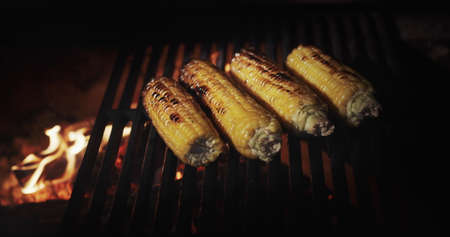 Delicious cobs of corn are fried on the grill grill over hot coals 写真素材