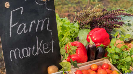 The counter of the farmers market. Seasonal vegetables from farmers