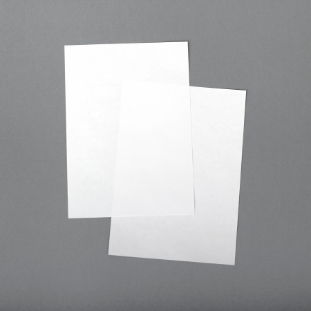 2 sheets of A4 isolated on a gray background photo