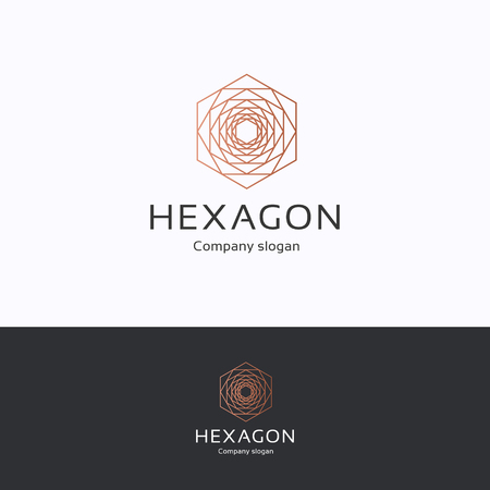 Hexagon logo. Sexangle copper black logotype. Premium flower nature template  イラスト・ベクター素材