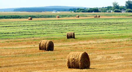 agriculture, harvesting karma, straw bales in the field near the village.