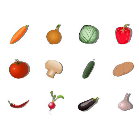 champignon: Vegetable set Illustration