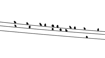 Common starlings on the power line. Vector silhouette a flock of birds